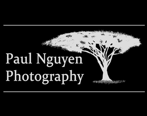 Paul Nguyen Photography