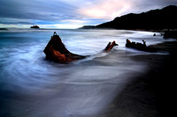 New Zealand's West Coast